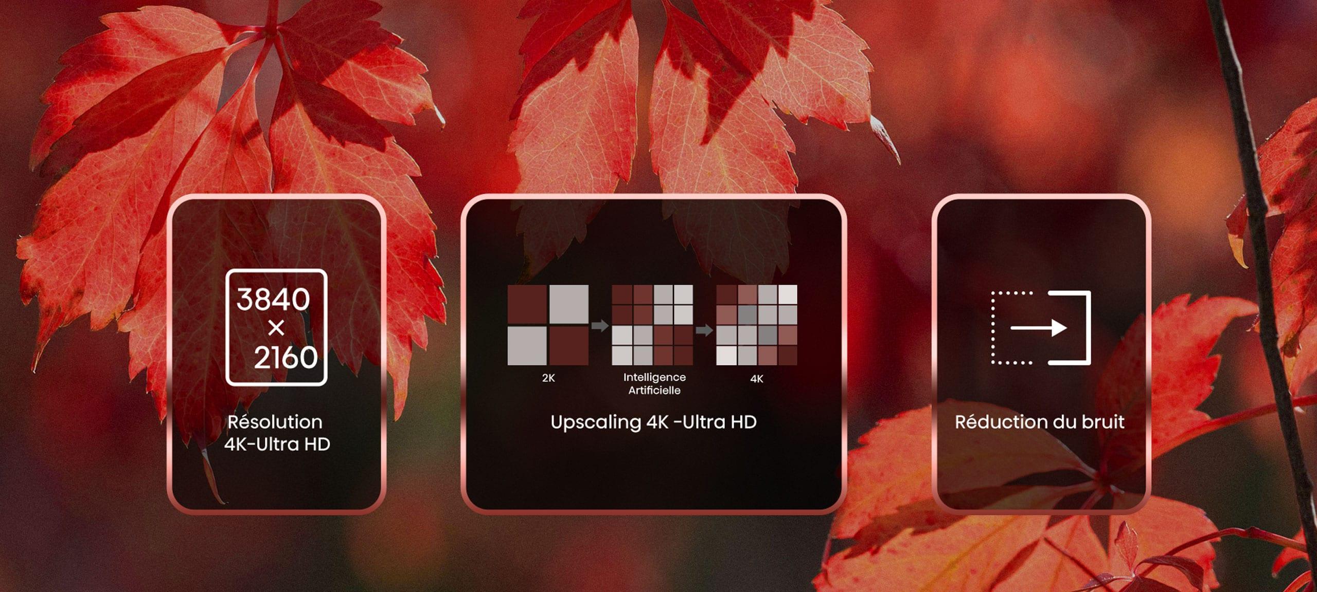 4K-desktop
